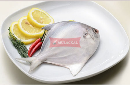 Picture for category Whole Fish