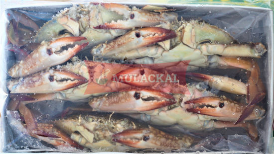 Mulackal Crab Whole (F) 150/200 1kg