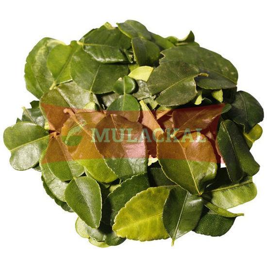 BDMP Kaffir Lime Leaves 100g