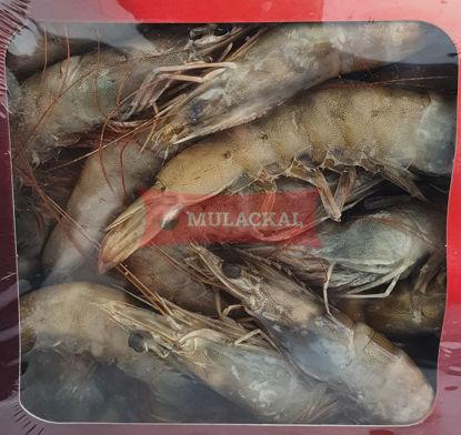 SEVEN White Tiger Shrimps HOSO 40/50 1kg