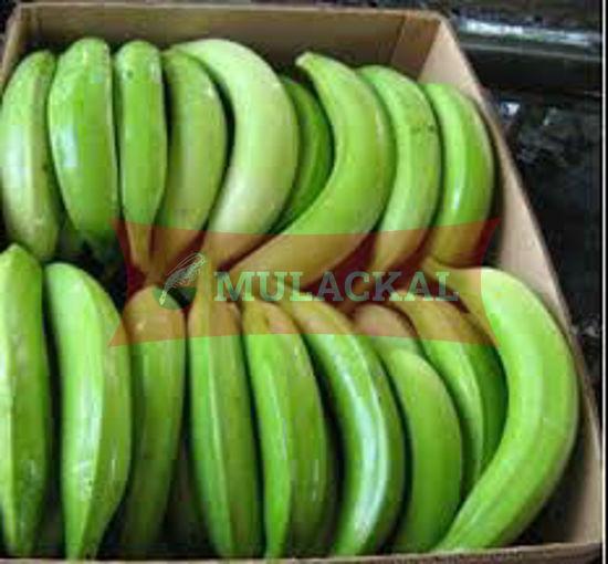 Green Plantain 22.7Kg